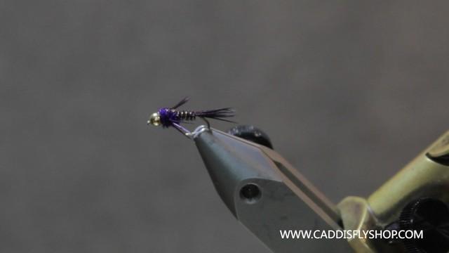 PurpleNymph
