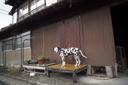 JE C9 15 063 福岡県嘉麻市山田 EP5 SER 18 3.8A#