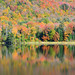 Long Pond Reflections by forester.jake