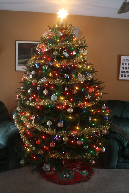 tree '13