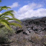 Lavastraße auf La Palma