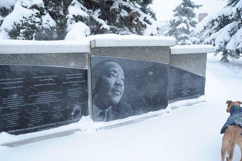 Rosie checks out Dr. Martin Luther King, Jr's memorial in the snow, donors names proudly enscripted, Park Strip, downtown, Anchorage, Alaska, USA by Wonderlane