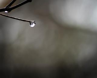 Rain Drop (Explore!)