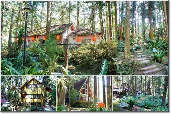 明山森林會館 (83)