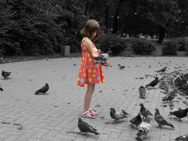 «Lady Bird»