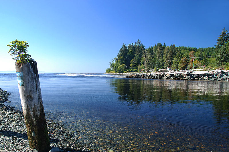 Jordan River, South Coast Vancouver Island, British Columbia, Canada
