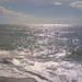 vacation-florida-boat-rentals-englewood-florida-11