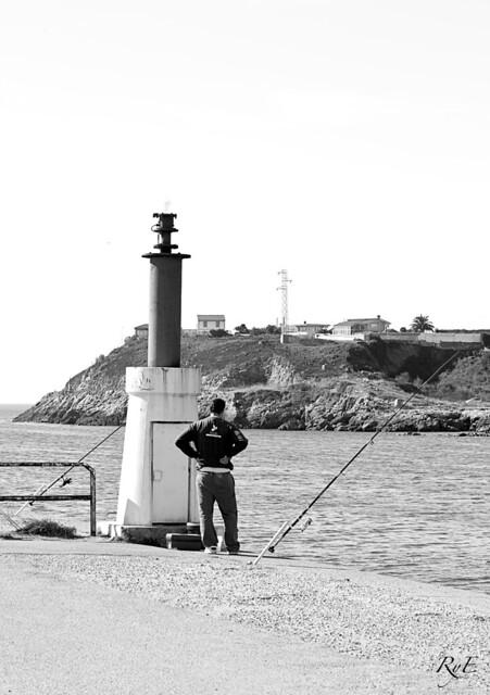 Tardes de pesca