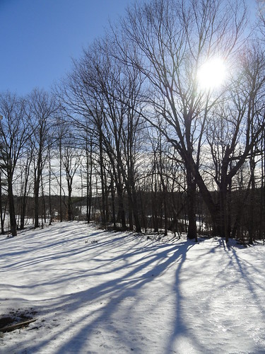 trees winter cold beautiful landscape day maine newengland sunny blueskies lisbonfalls whiteclouds sonydsch55