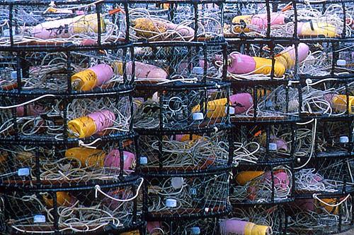 Crab Traps in Masset, Graham Island, Haida Gwaii (Queen Charlotte Islands), British Columbia, Canada