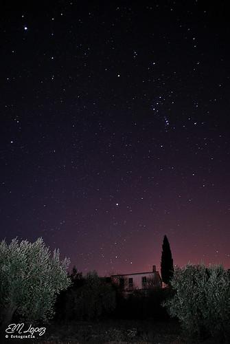 Las estrellas del invierno