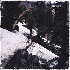 Through some snow