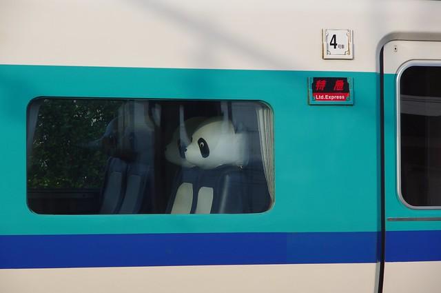Photo:381系くろしおパンダシート By umelog