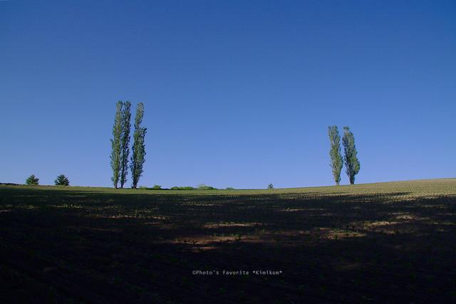 赤羽の丘2