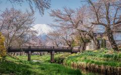 Spring in Oshino Hakkai