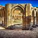 (2383) Arcos de San Juan de Duero by QuimG