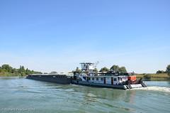 River Saône - Photo of Écuelles
