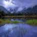 Monsoon dreams by Sapna Reddy Photography