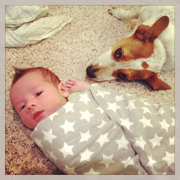 Chilling with his pooch. #dog #newborn #babyhaze #love #hound