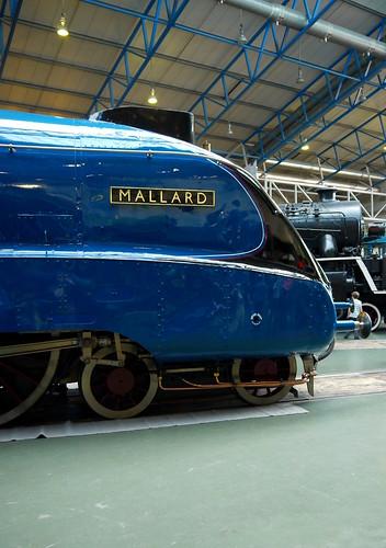 NRM - Mallard75
