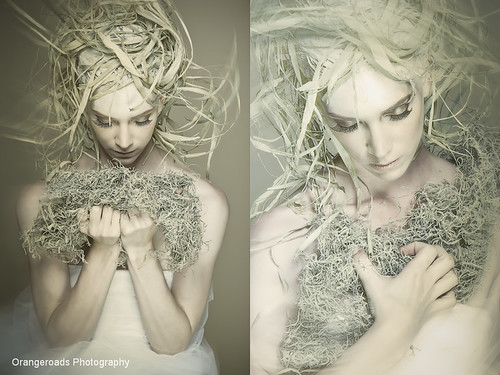 Organic Muse by Toni Wallachy