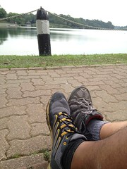 National Day walk around MacRitchie. Spotted a runner four times along the route.