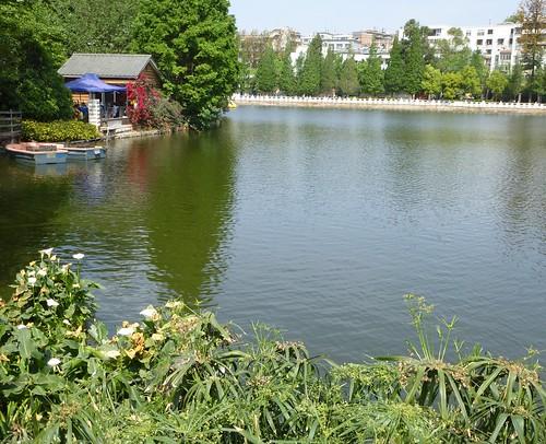 Yunnan13-Kunming-Nord-Parc (8)