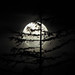 Spooky Moon by Beau Ramsey