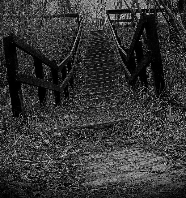 The creepy stairs to no where