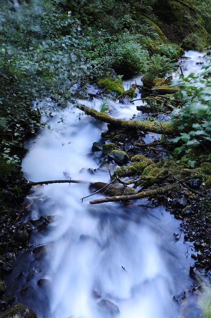 Portlandia, Part 3-6