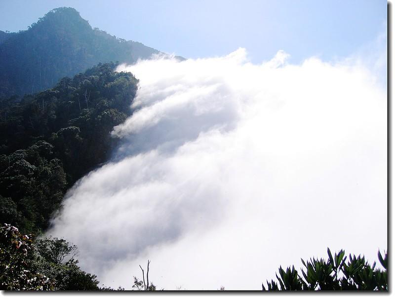 雲海 (From 裸岩展望台, 攝於2005.10.16 )