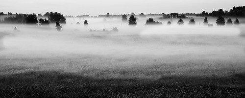 morning trees summer sky bw house mist building tree nature field grass fog forest landscape early blackwhite natural sweden farmland agriculture a77 1650 sunrisefarm östergötlandcounty