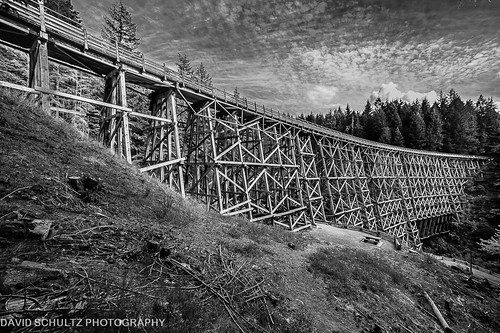 kinsoltrestle victoriabc vancouverisland d700 nikon nikonians tamron wideangle landscape 8272012 davidschultzphotographycom mountbakercameraclub throughthelensrevelations blackandwhite bw monochrome black white contrast outdoor canada