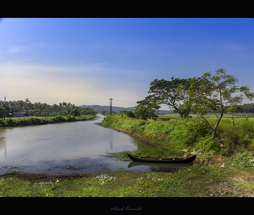 sky india tree abandoned canon river boat village kerala thrissur trichur