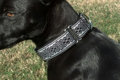 Adjustable Martingale
