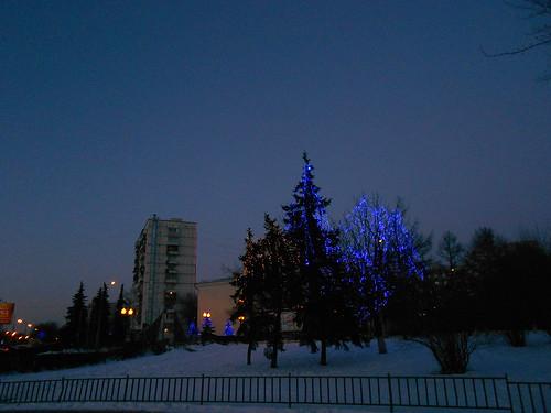 синие деревья минимум