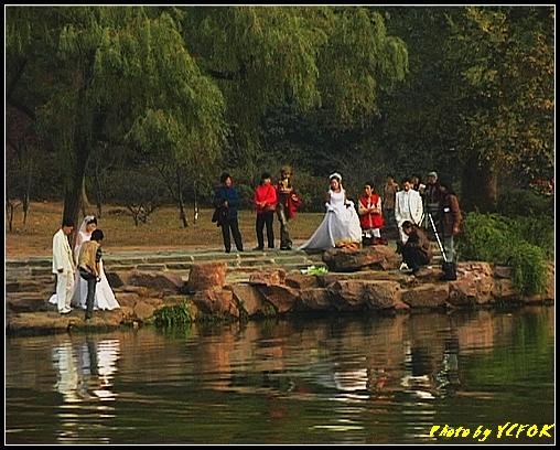 杭州 西湖 (其他景點) - 686 (北山路湖畔 孤山公園內 拍攝婚紗相)
