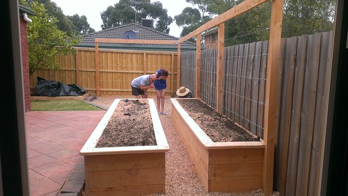 Building Wicking Beds in Melbourne - Very Edible Gardens on wood raised bed garden, perfect raised bed garden, in ground or raised bed garden, self watering raised bed garden, box design raised bed garden, pallet raised bed garden, drip watering system for raised bed garden, galvanized steel raised bed garden, building plan raised bed garden, raised bed vegetable garden, pvc irrigation raised bed garden, concrete block raised bed garden, frugal raised bed garden, onion raised bed garden, raised bed herb garden,