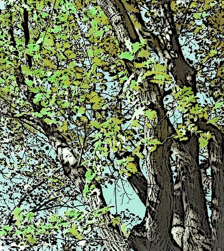 Oak Tree Green Leaves (Digital Woodcut) by randubnick