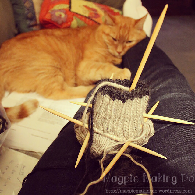 Genghis and knitting