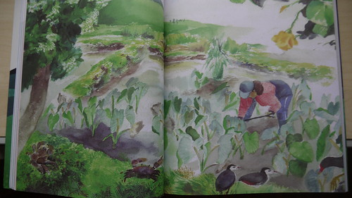 蘭嶼農業與生態結合的景觀,翻攝「台灣原住民族環境智慧」內頁插圖