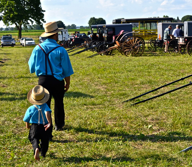 Amish papa and son - Amish Auction Lancaster County PA
