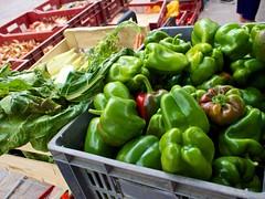 Pick up a pepper - Photo of Senillé