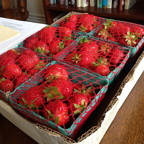 Last week my landlady picked a bunch of my strawberries before they were ripe, rendering them useless and me livid. Today a friend of mine sent me these as a replacement. I am one lucky lady (with an office that smells like summer!)