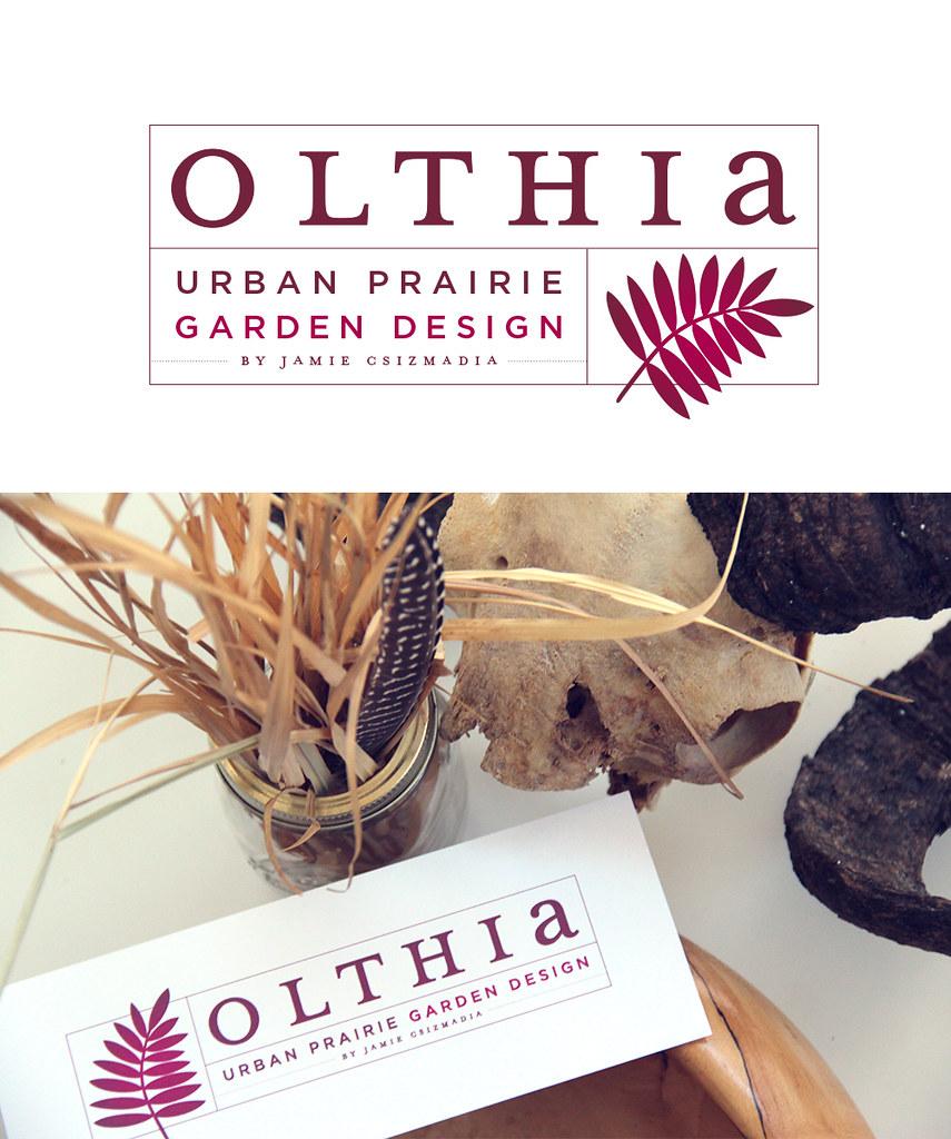 Olthia