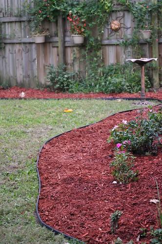 Front Garden - new