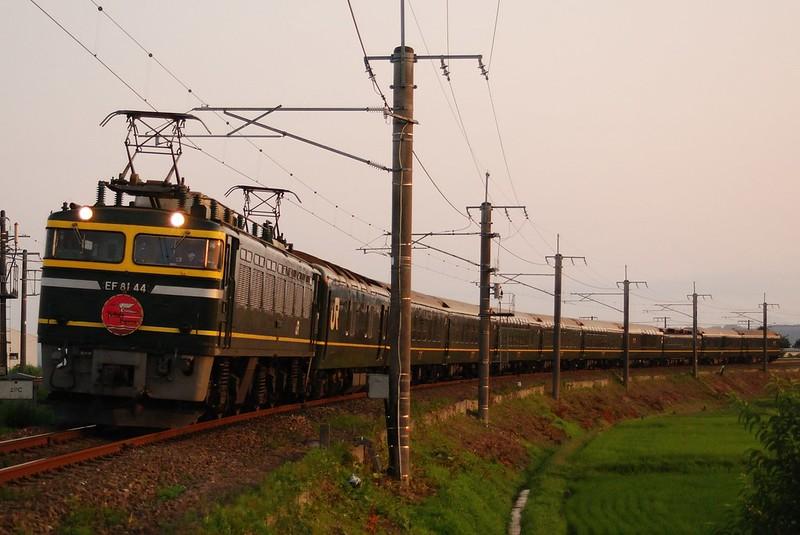EF81-44