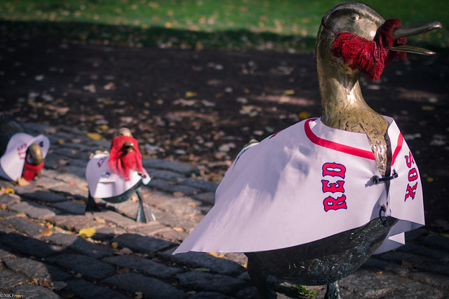 Make Way for Ducklings Ready for the World Series