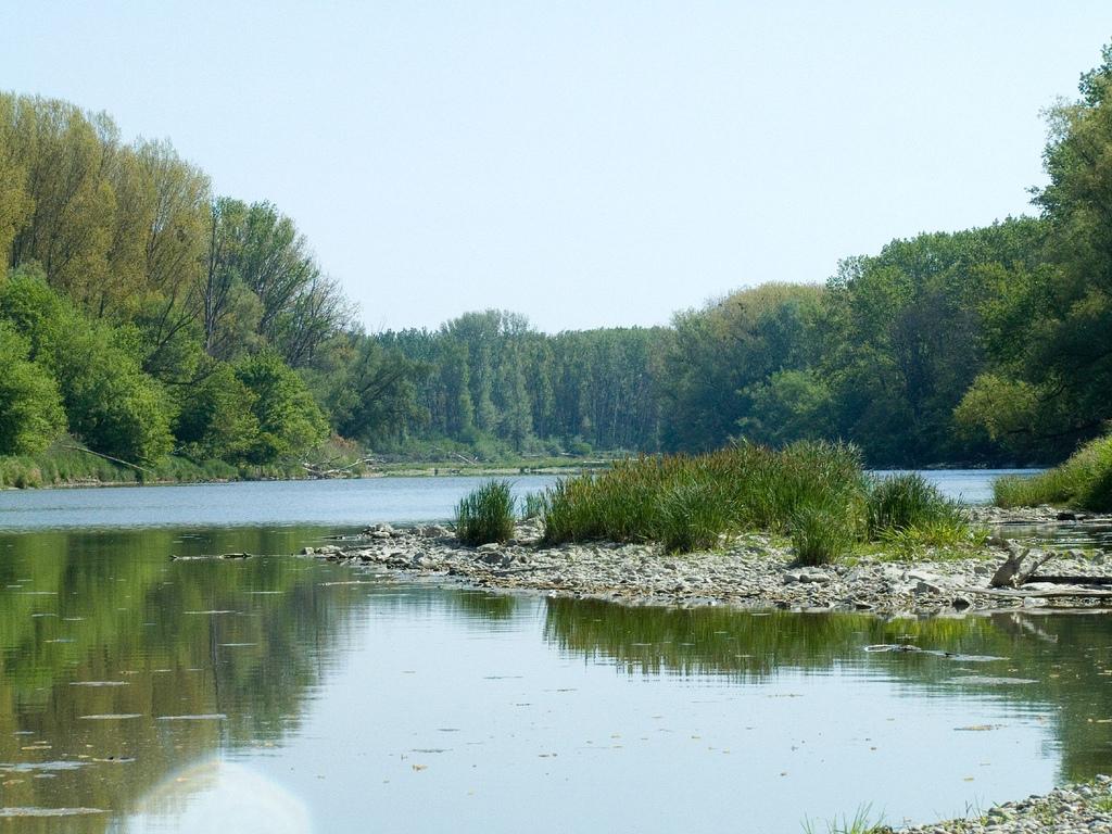 9. Danubio en el Parque Nacional Donau-Auen. Austria. Autor, Thomas Lieser