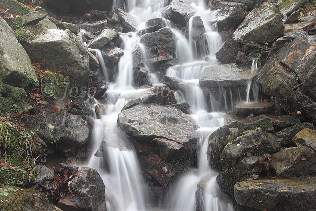 Parque Natural de Gorbeia/Gorbea #DePaseoConLarri #Photography 2137